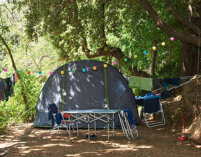 camping-oliviers-06
