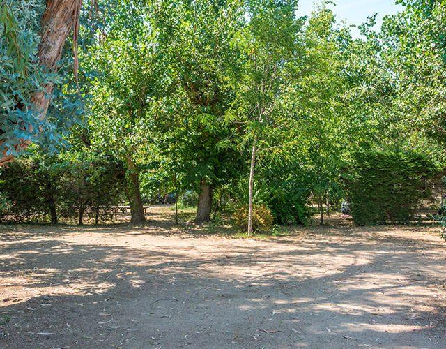 camping-u-prunelli-05